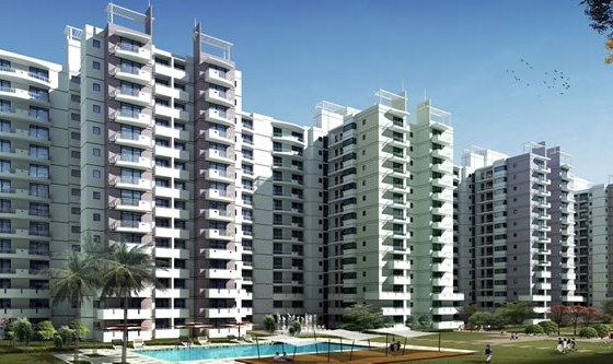 amrapali verona height
