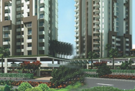 amrapali apex court